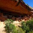 Mesa Verde – Cliff Castle
