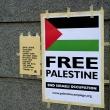 Free Palestine?